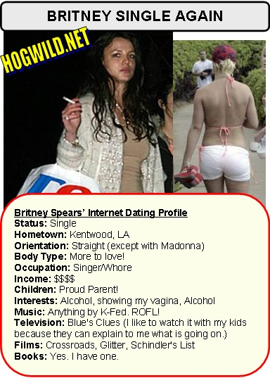 Witty online dating profiles