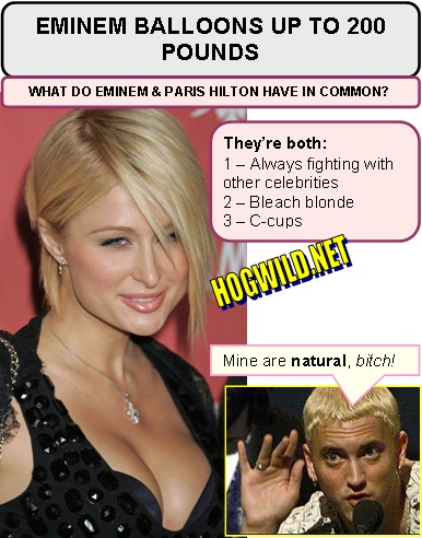 fat jokes funny. fat eminem paris hilton