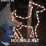 Twisted Humor of HogWild